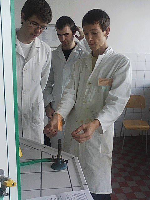 Fotografia v laboratóriu, LŠCh 2010 Nitra
